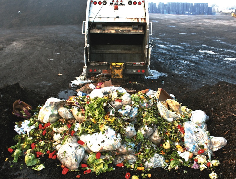 Get green fingers with organic waste