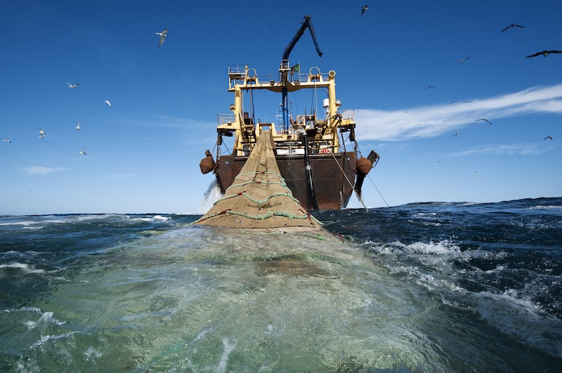 Overfishing – you can stop it